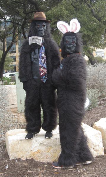 gorillasab01-21-12.jpg